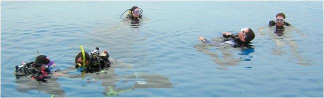 Bahamas & Caribbean Open Water Scuba Diving Shop