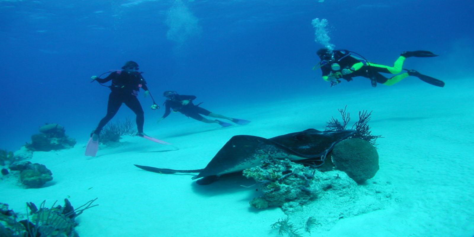 Diving Boat Charters in Provo TCI